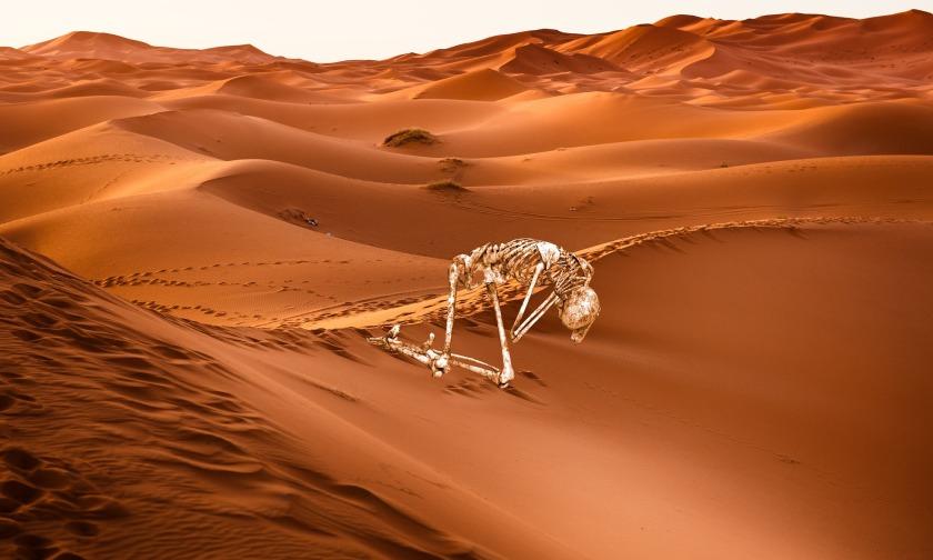 desert-3076645_1920